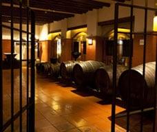 Museum Anggur Macau